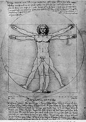 De Mens van Vitruvius